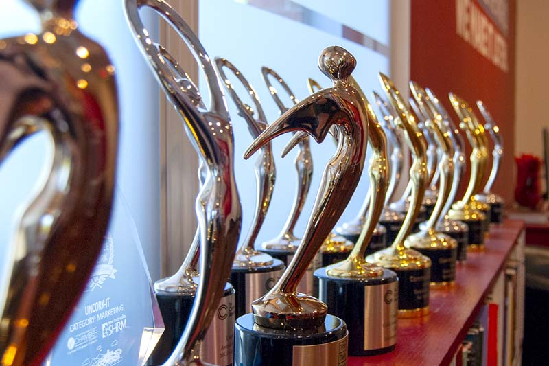 A photo of our awards on display in the front section of our office.
